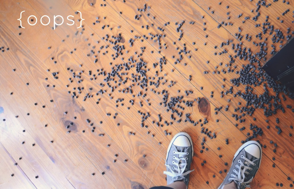 Don't cry over spilled chocolate chips via @jennyonthespot