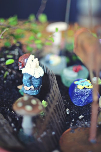 a gnome in a fairy garden