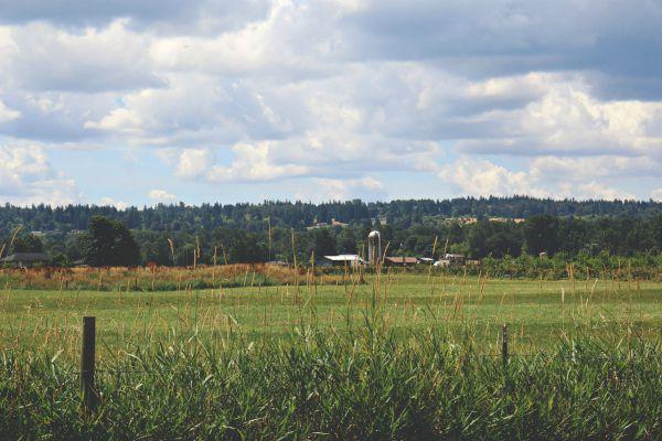 Western Washington farmland