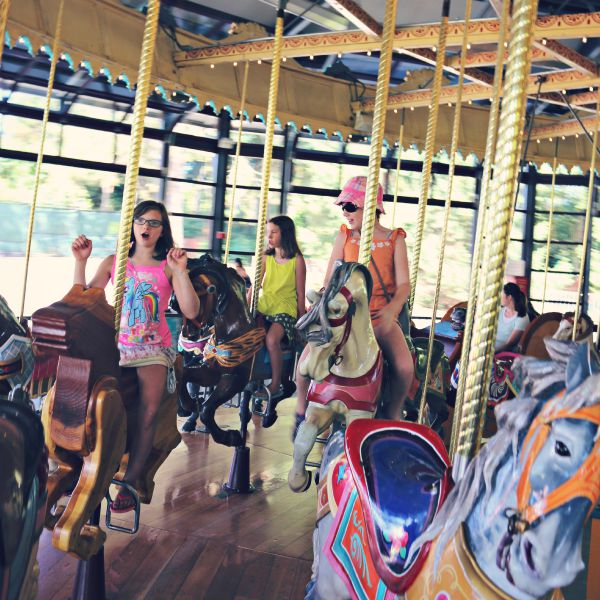 The carousel - A visit to the Woodland Park Zoo