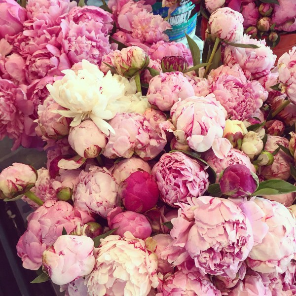 Peonies at Pike Place Market in Seattle via @jennyonthespot