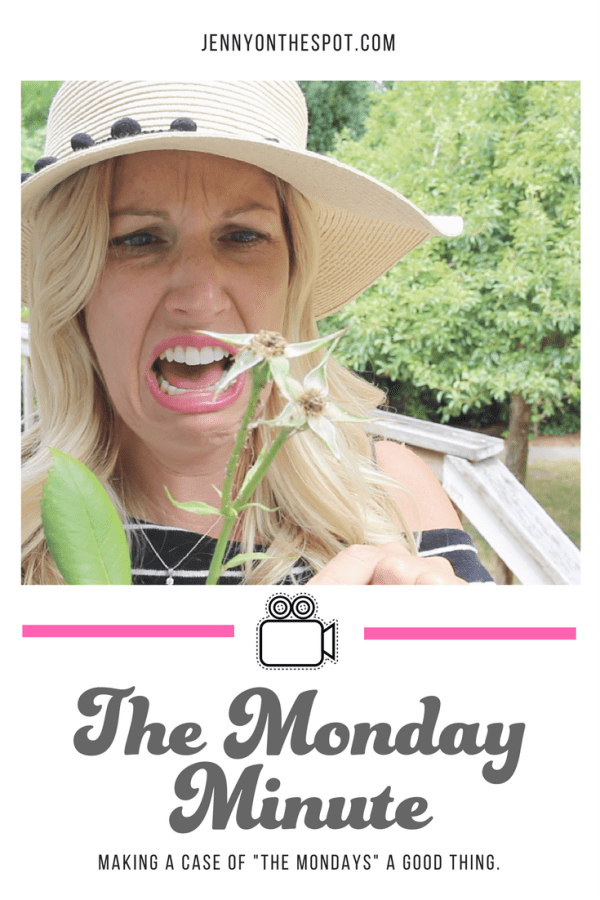Monday Minute - A Merry Go Round and Tequila