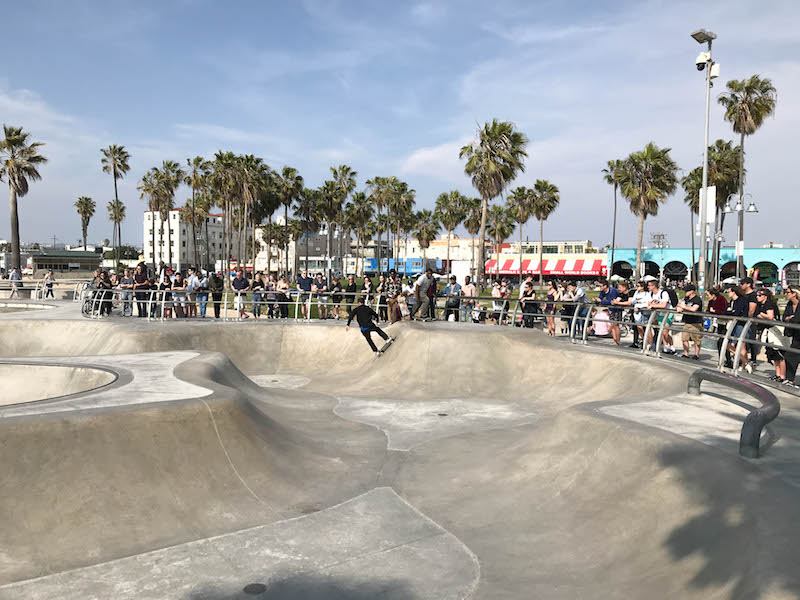Family Vacation in Los Angeles: Venice Beach Shenanigans