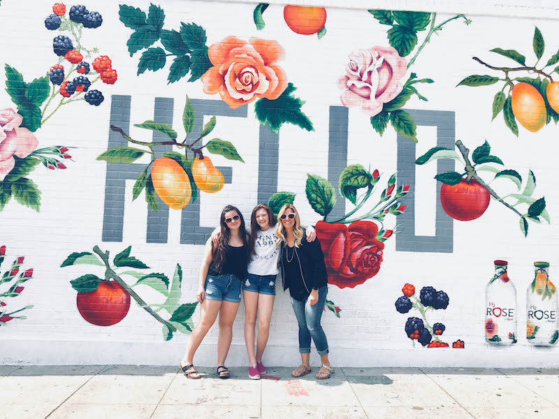 So Cal Instagram Wall on Melrose