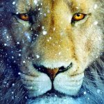Lion's Gate Energy Lifting the Veils