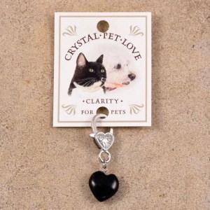 Obsidian Pendant for pets by Jenny Schiltz