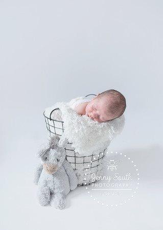 Newborn baby boy and toy elephant