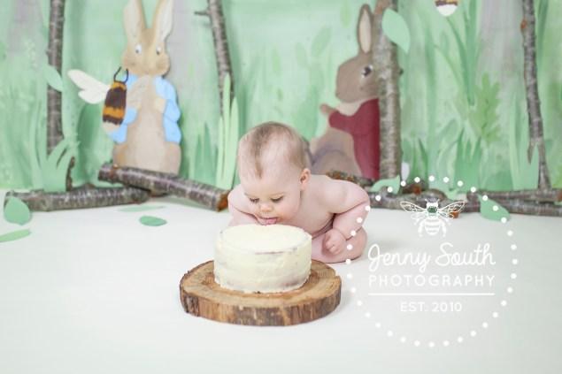Peter rabbit themed cake smash
