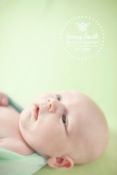 Newborn baby wide awake against a green backdrop during his newborn session with Jenny South Photography