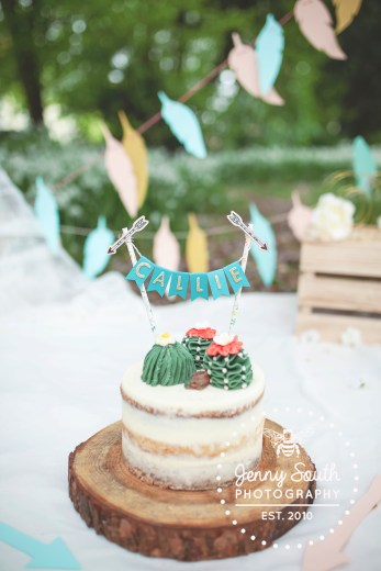 Naked cake with cactus on to in a where the wild things are custom cake smash photography session