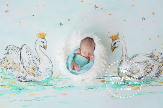 Baby Swan, baby girl sleeps between hand painted swans