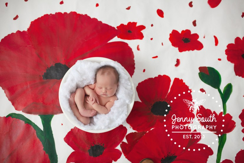 A newborn sleeps in a bowl against a poppy themed handprinted backdrop.