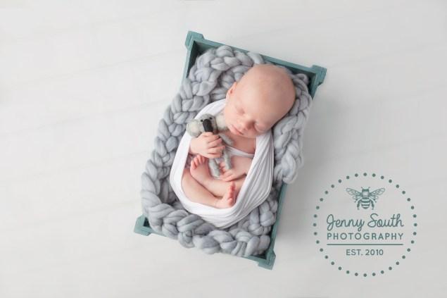 A baby boy sleeps during a newborn photo shoot in a litte blue create holding a koala teddy