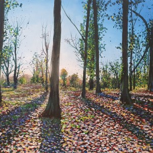 Autumn light - Leigh Woods by Jenny Urquhart