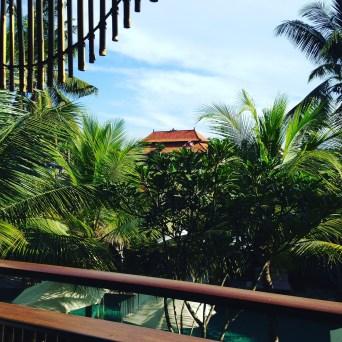 Views in Ubud