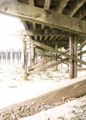 under the docks