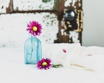 Flowers-1-29-16-4