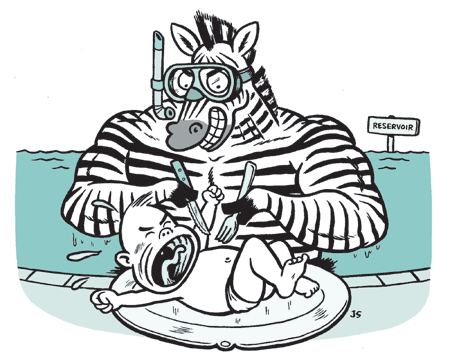 zebramussels