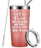 We Will Be Friends Until We Are Old And Senile, Funny Best Friend Friendship Gifts for Women, Men, Coworker, Roommate, BFF, Stainless Steel Tumbler Cup with Lid and Straw Birthday Gifts  by Fufandi