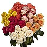 GlobalRose 100 Assorted Roses- Beautiful Fresh Flowers- Express Delivery