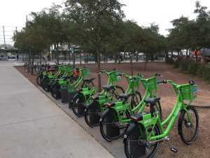Grid bikes for rent in Tempe, Arizona