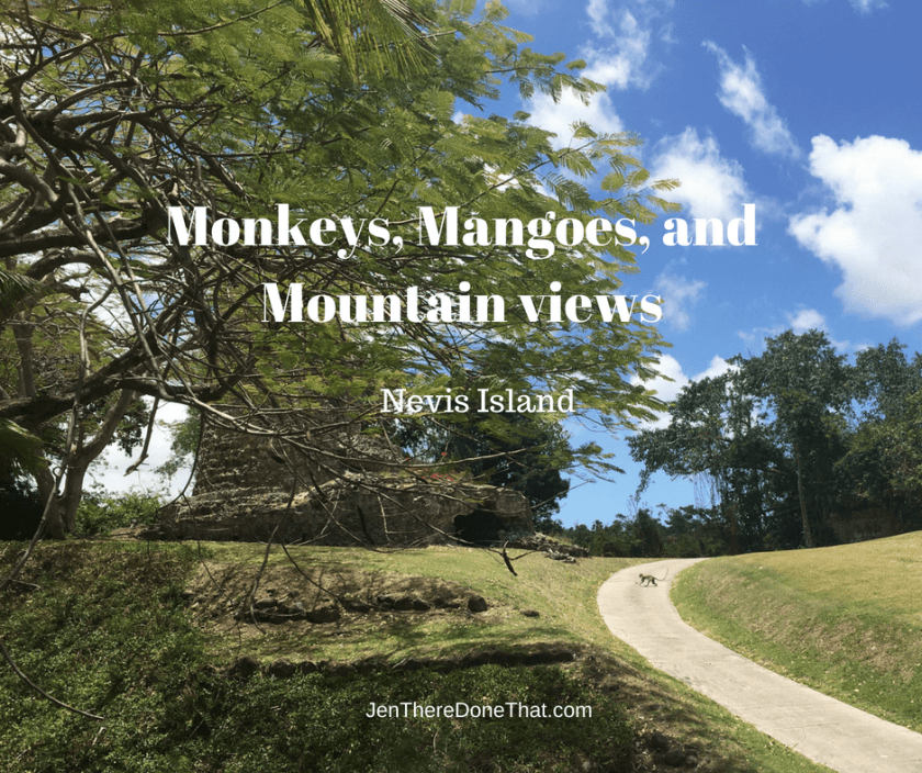 Nevis Island Monkeys, Mangoes, and Mountain views
