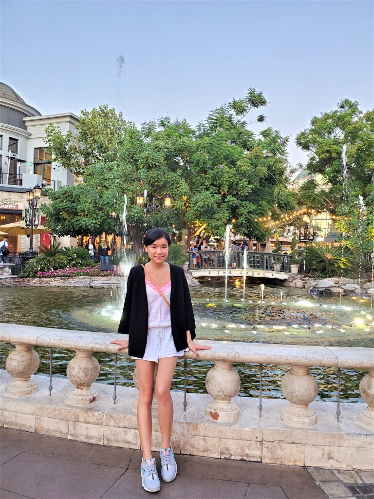 The Grove LA Water Fountain