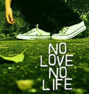 no love no life