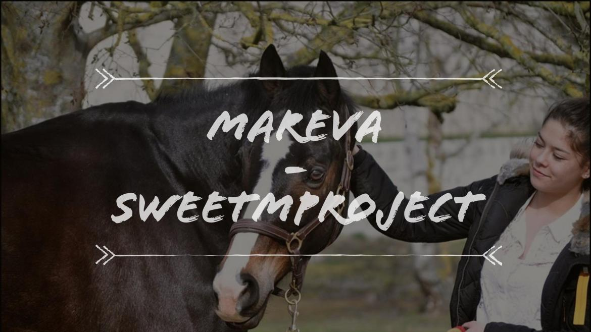 {Portrait} Mareva de SweetMProject, Youtubeuse et Blogueuse