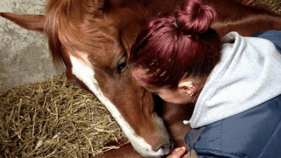 anthropomorphisme-je-peux-pas-jai-poney-blog-equestre-reflexions