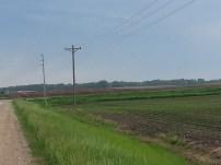 Biking Rural Scott County Minnesota (14)