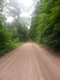 Biking Rural Scott County Minnesota (17)