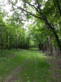 Biking Rural Scott County Minnesota (6)