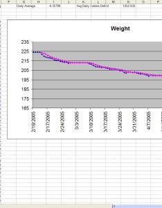 The diet spreadsheet also by jeremy zawodny rh jeremywodny