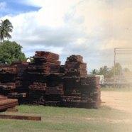 Timba (Wood)