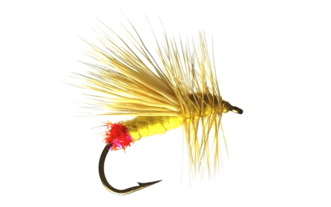 Yellow Sally – Fly Pattern of the Week