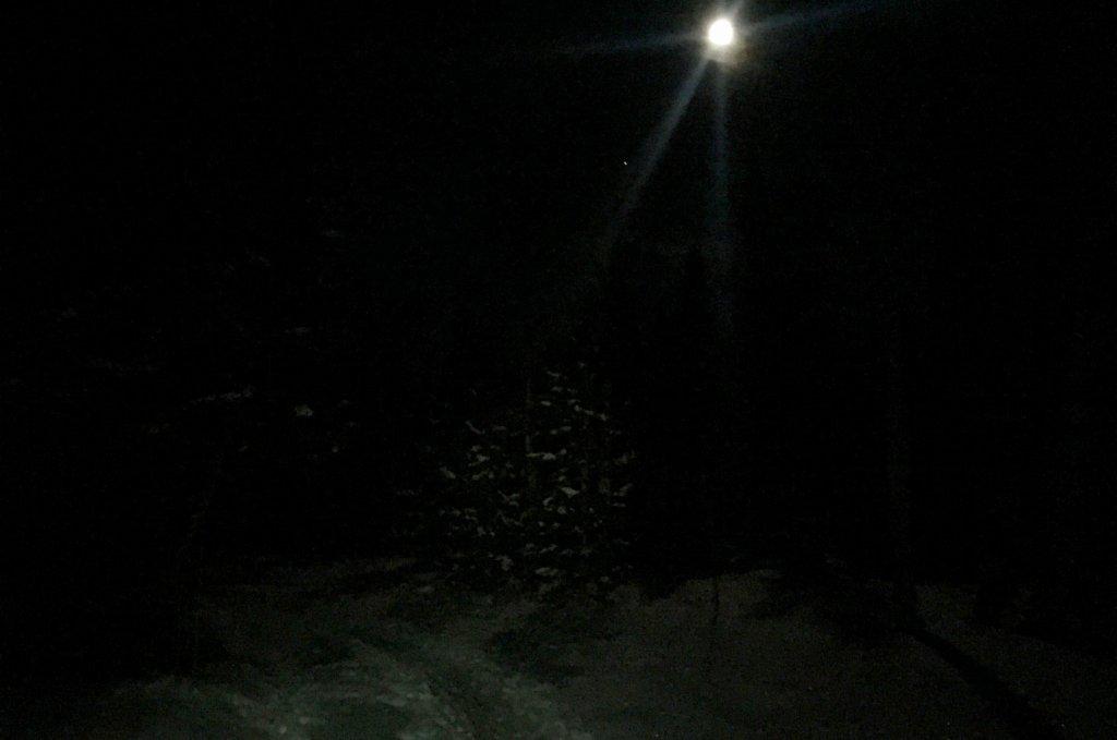 Moonlight Ski Touring