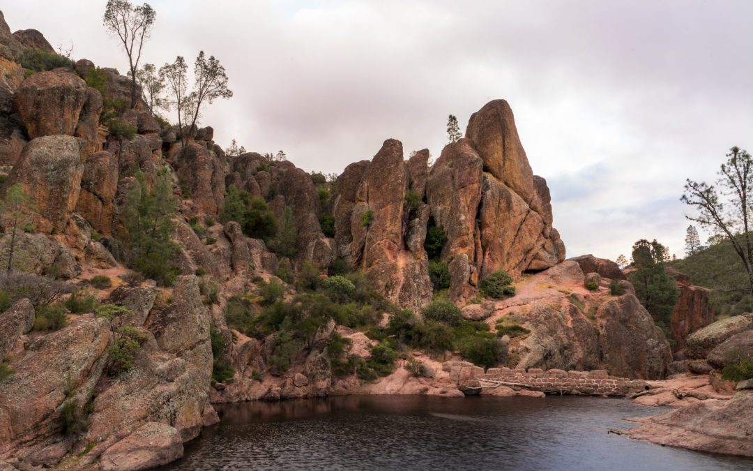 A Day Trip to Pinnacles National Park