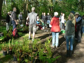 volunteers get instructions for planting ferns and shrubs on Earth Day 2015