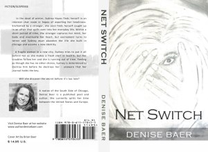 Picture of Net Switch by Denise Baer Book Cover