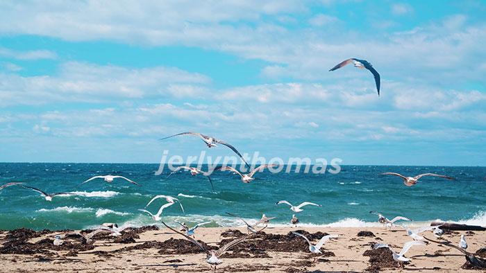 Rhode Island Sound