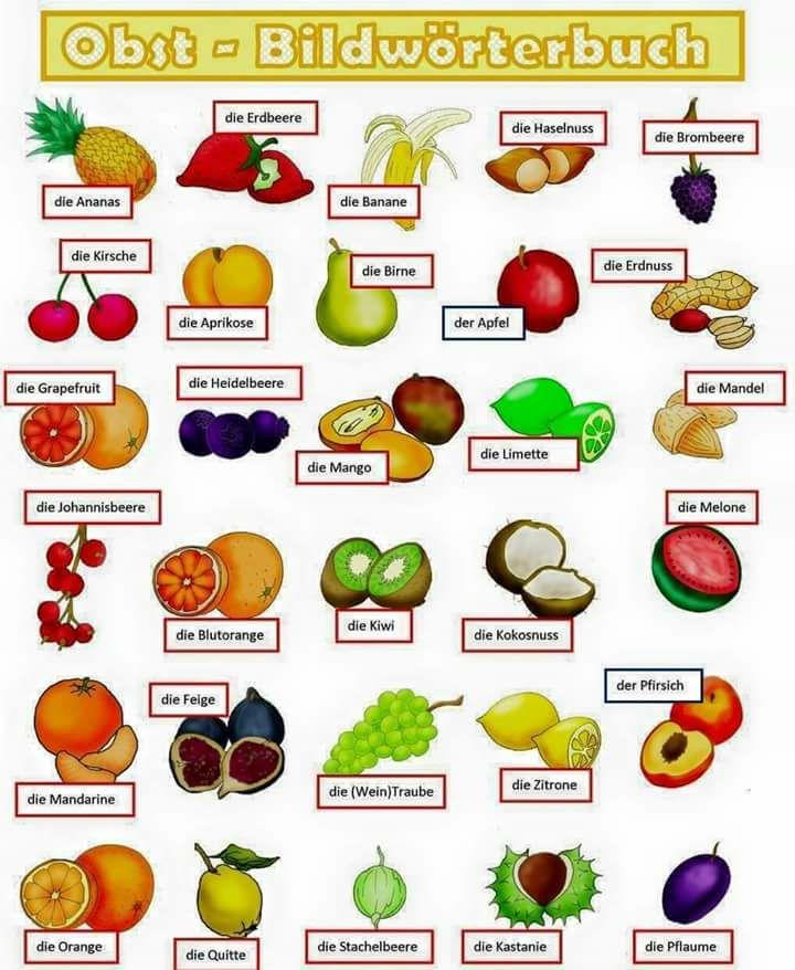 Nama Buah Dalam Bahasa Jerman. Fruit in German. Das Obst