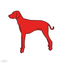 Rode Hond / 20x20cm / oplage 50
