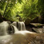 Waterval op de Ehrbach rivier in de Duitse Hunsrück. Je ziet een forse watervan in een bos, waarvan het groene bladerdek fel beschenen wordt door de zon. Rechts van de waterval zie je een rotspartij. Door een lange sluitertijd te gebruiken krijgt het stromende water van de waterval een melkachtig effect wat de beweging suggereert.