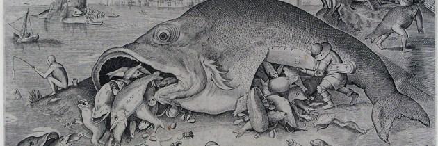 Vissen zonder het haakje te verstoppen