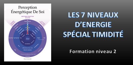 formation 7 niveau d'energie