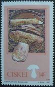 Ciskei, Edible Mushrooms, Boletus edulis, 1987