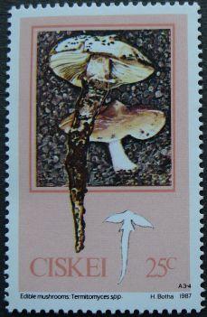 Ciskei, Edible Mushrooms, Termitomyceas spp., 1987