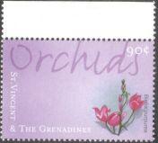St Vincent & the Grenadines, orchids, Bletia purpurea