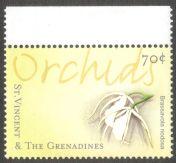St Vincent & the Grenadines, orchids, Brassavola nervosa